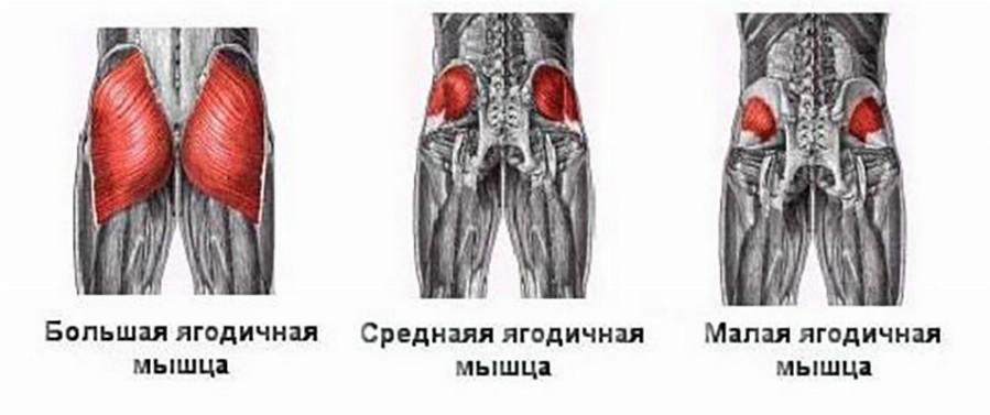 articulațiile și mușchii unei persoane rănite