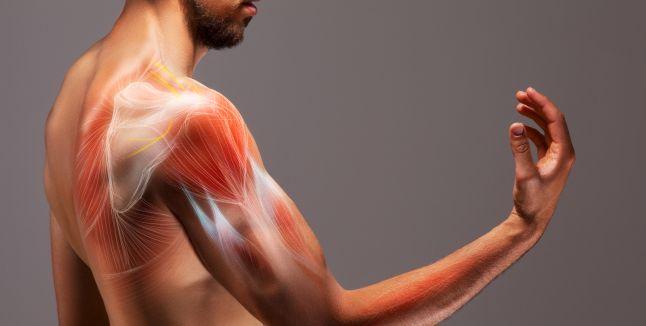 dureri vaginale în mușchi și articulații