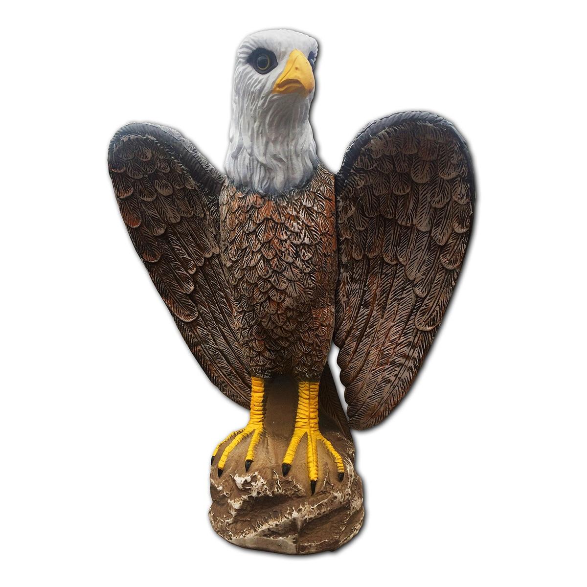 Vulturi • Animale domestice si pasari • championsforlife.ro ✔️ Anunturi gratuite