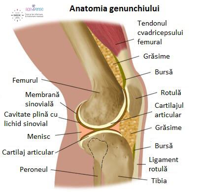 cauzele durerii în articulația genunchiului la un adolescent