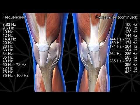 Meditație norbekov pentru dureri articulare. Cum să tratezi articulațiile bolnave cu artroză