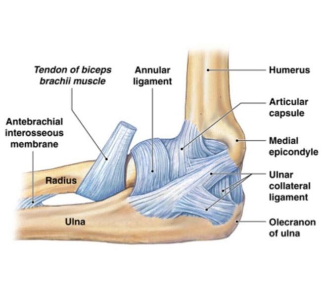 atenuând durerea genunchiului articulația genunchiului doare în cot