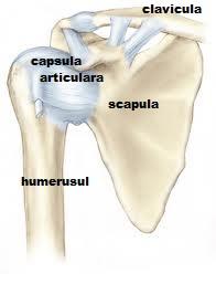 articulația acromioclaviculară doare