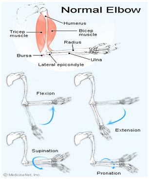 durere a articulației cotului cu revenirea la mână