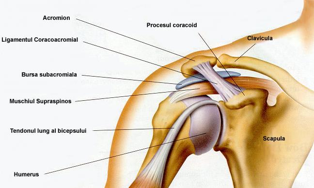 când apăsați pe articulațiile degetelor, durere este posibilă tratarea artrozei deformante