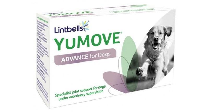artroza în tratamentul câinilor ciobani