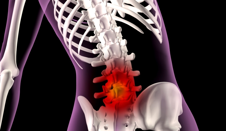 dureri la nivelul umărului uman tratament comun cu sophora