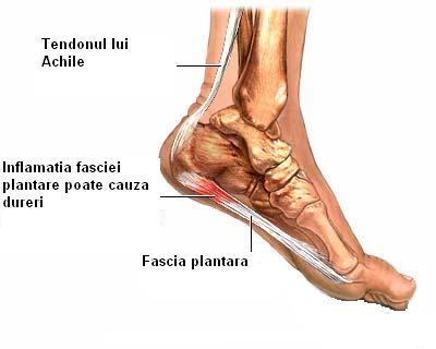 articulațiile picioarelor doare după alergare
