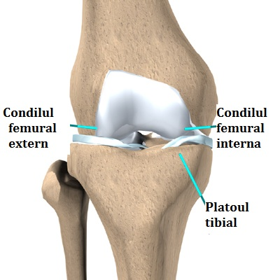 deteriorarea tibiei în articulația genunchiului