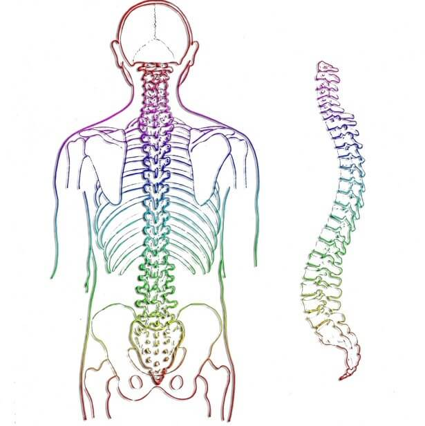 dureri la nivelul articulației sacroiliace durere plictisitoare la genunchi atunci când mergeți