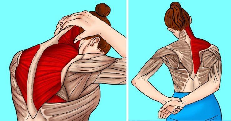 tratamentul articulației gleznei cu artroză