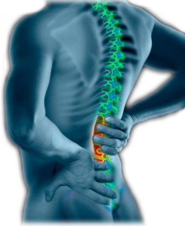 dureri în spate și articulațiile picioarelor tratamentul simptomelor artrozei la încheietura mâinii