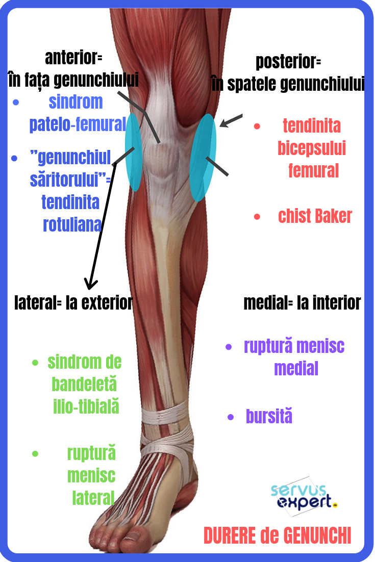 articulația genunchiului doare singur