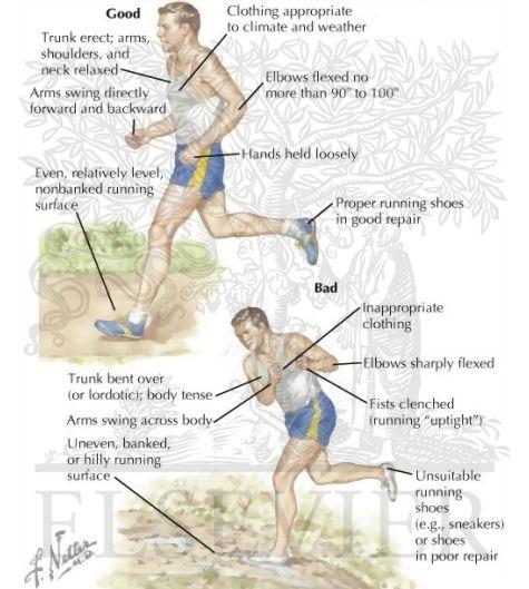 Genunchi durere pe interiorul genunchiului după ce a alerga, genunchiului