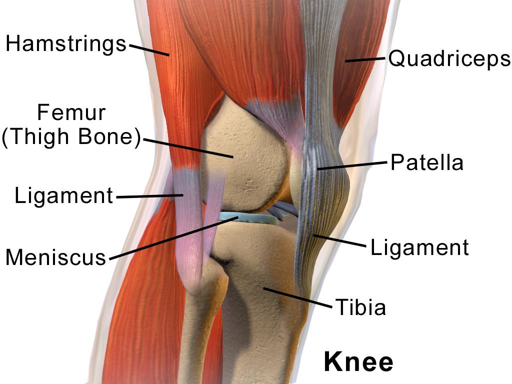 probleme ale articulațiilor genunchiului