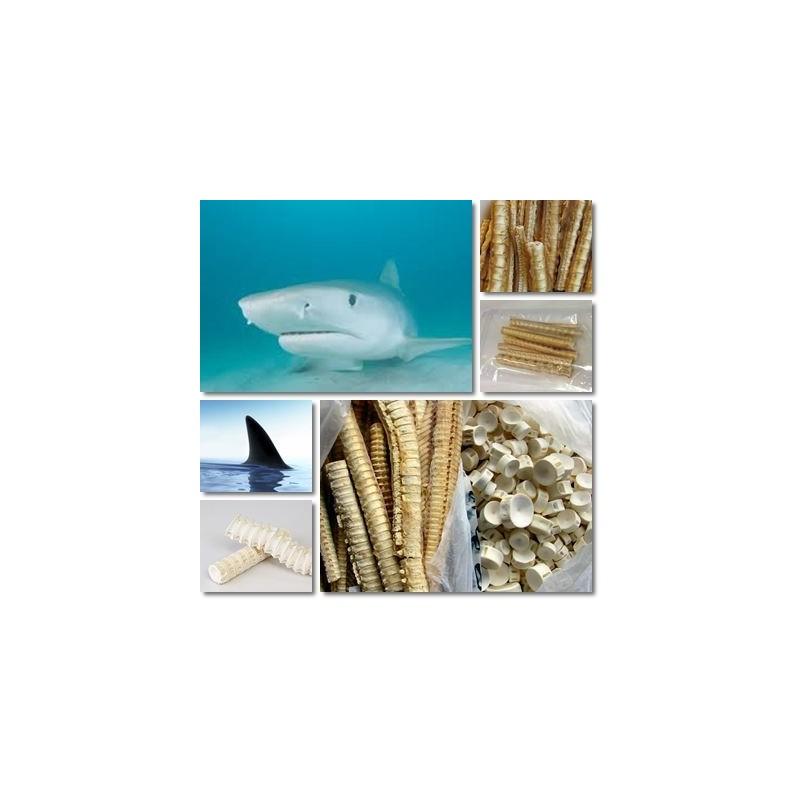grăsime de rechin pentru dureri articulare Preț osteoporoza simptomelor articulației cotului și a tratamentului