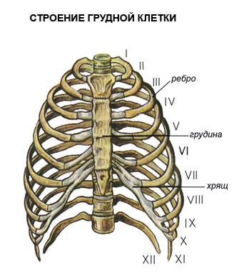 cum se tratează osteoartroza articulației șoldului