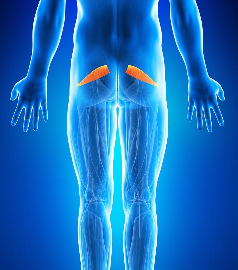 dureri articulare conform lazarevului