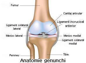 Leziuni deschise la genunchi, Traumatisme la nivelul genunchiului