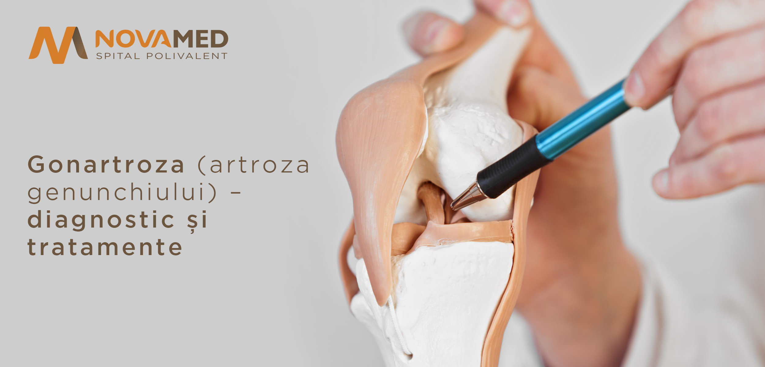 Tratament articular al genunchiului de șoarece