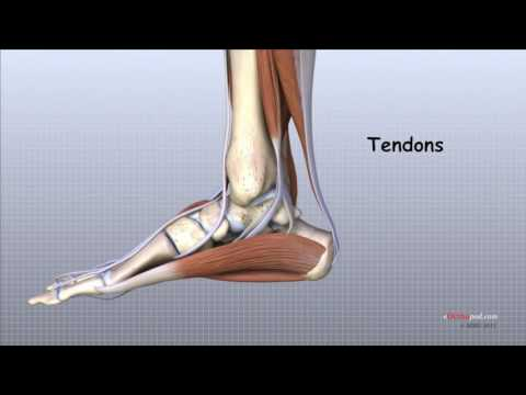 tratament post-traumatic artroza-artrita gleznei