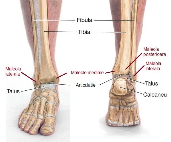 Articulația genunchiului nu se îndoaie după accidentare