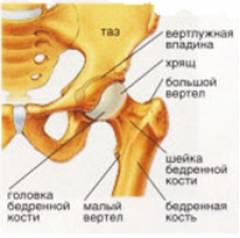 unguente în tratamentul artrozei umărului