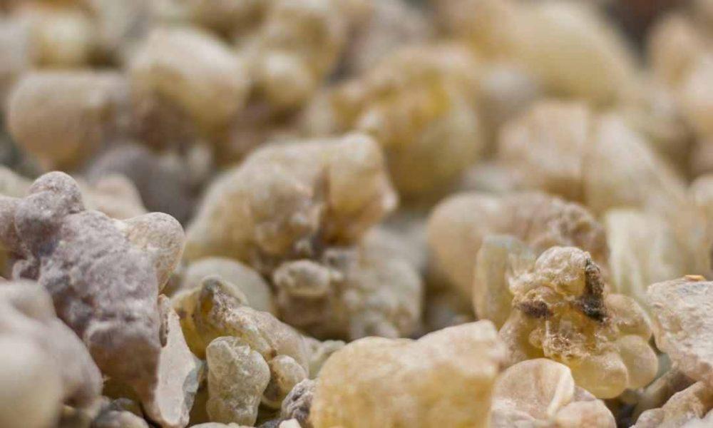 Tămâia sau Boswellia Serrata. Remediul natural antidurere